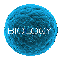 cell biology index